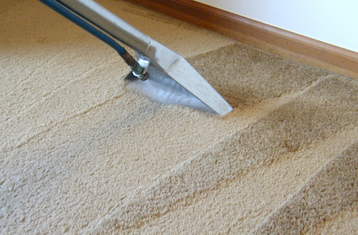 limpeza-de-carpete  DOUTOR CARPETE-